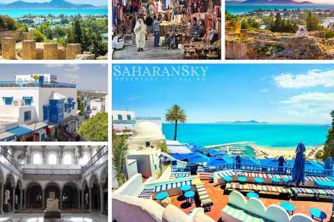Tunis: Carthage, Sidi Bou Said & Bardo Museum Private Tour