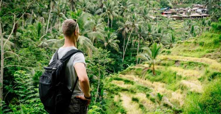 Ubud: Highlights Small Group Guided Tour