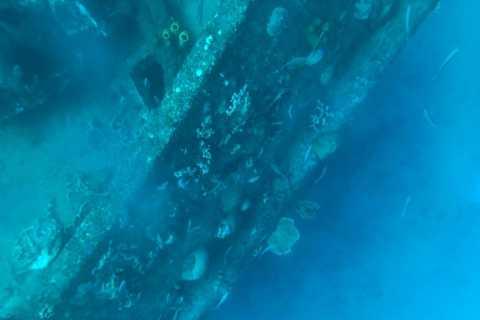 Bridgetown: Excursão de naufrágio de caiaque claro de Carlisle Bay