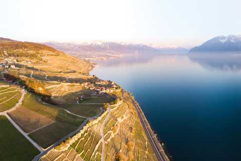 Lavaux: Panoramic Dinner Experience