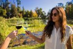 Concha y Toro: Official Winery Tour