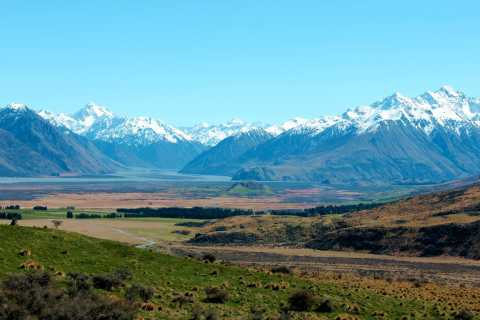 Scenic Tour & Lord of the Rings from Christchurch