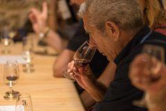 Porto: Tour Cave de Vinho do Porto Poças c/ Degustação