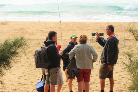 St Lucia: 2.5-Hour iSimangaliso Wetland Park Walking Tour