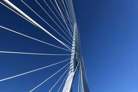 Privé-architectuurwandeling door Rotterdam