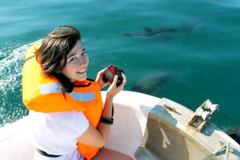 Ria Formosa: Dolphin-Watching Boat Tour