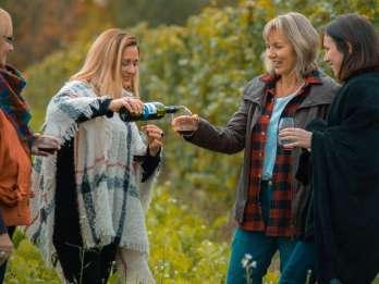 Niagara: Weingut-Tour mit Verkostungen & Mittags-Option