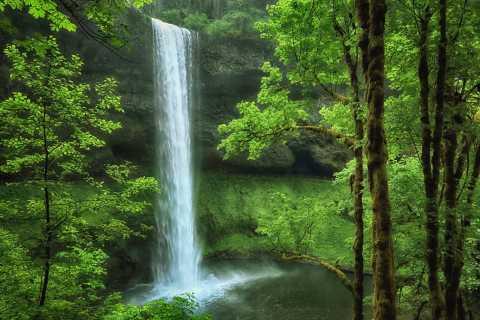 Portland: Tout-inclus Willamette Valley Waterfalls & Wine
