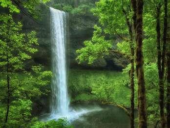 Portland: All-Inclusive Willamette Valley Wasserfälle und Wein
