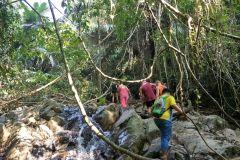 De Phuket: caminhada de meio dia na selva com embarque no hotel
