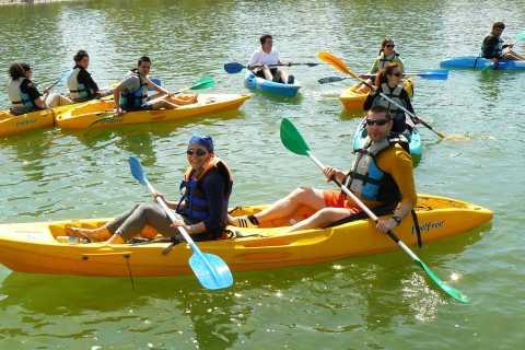 Sevilla: 2,5 horas de kayak en el río Guadalquivir