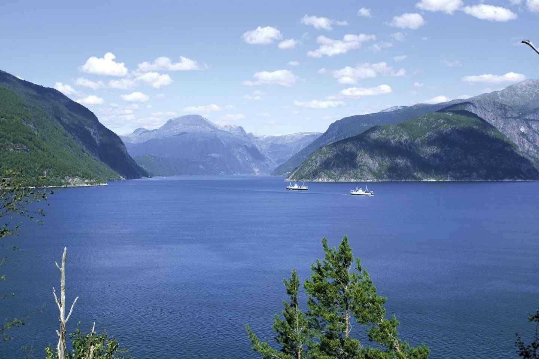 Ab Bergen: Privater Ausflug zum Hardangerfjord