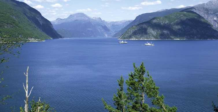 From Bergen: Private Trip to Hardangerfjord