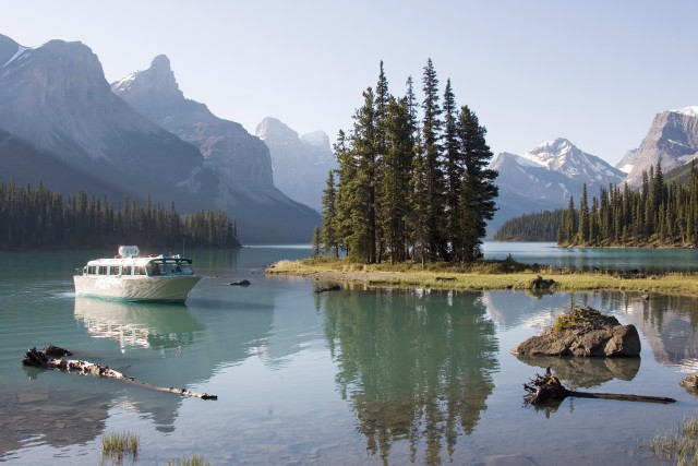 Wildlife & Waterfall Tour with Maligne Lake Cruise