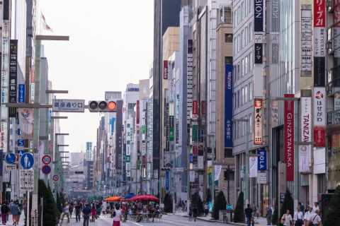 Tokyo: 1-Day Personalized Shopping Tour with Driver