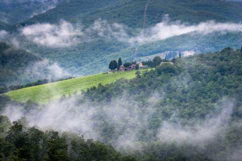 Chianti: Total nedsänkning Vin Tour med Picnic Lunch