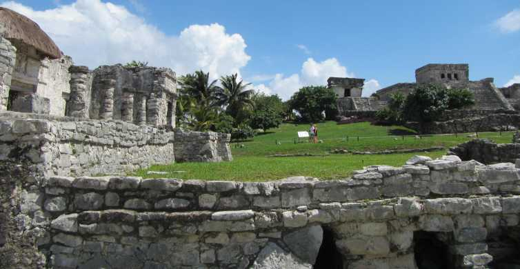 Desde Playa del Carmen: ruinas de Tulum, cuevas y tortugas