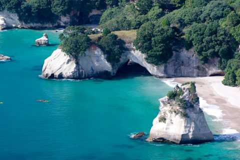 From Auckland: Small Group Coromandel Peninsula Day Tour