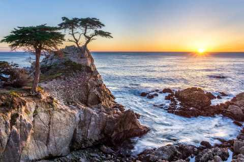From San Francisco: Monterey and Carmel Day Tour