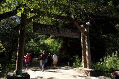 São Francisco: Muir Woods, Sequoias Gigantes e Sausalito
