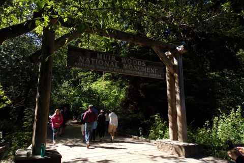 San Francisco: Muir Woods, Giant Redwoods & Sausalito Tour