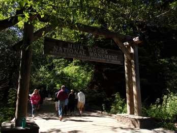 Ab San Francisco: Muir Woods, Riesenmammutbäume & Sausalito