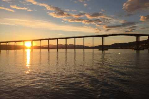 Tromsø: Midnight Sun Cruise in a Luxury Catamaran