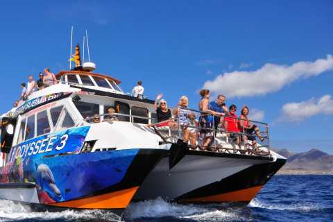 Fuerteventura: Glass Bottom Boat Cruise with Lunch