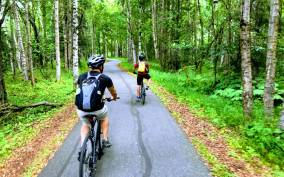 Anchorage: Coastal Trail 3-Hour City Bike Tour