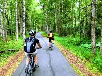 Anchorage: 3-stündige Fahrradtour entlang der Küste