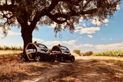 Évora: Passeio de Carro Autoguiado a Monumentos Megalíticos