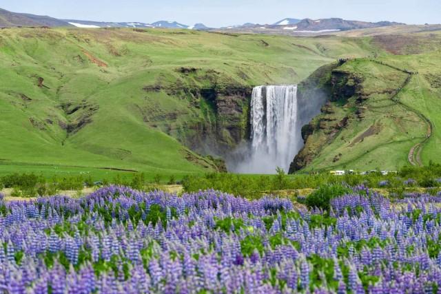 Van Reykjavik: Private South Coast Tour