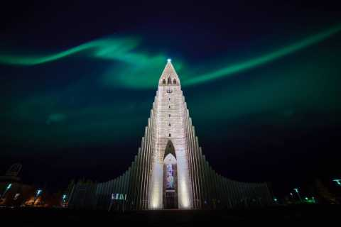 From Reykjavik: Private Northern Lights Tour