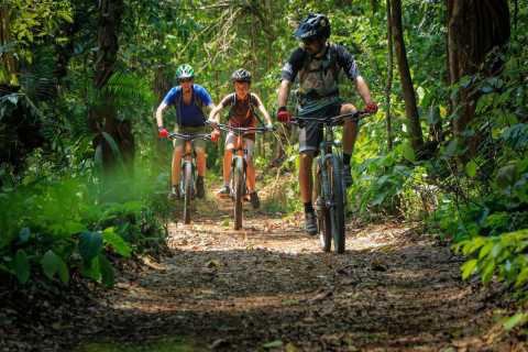 Chiang Mai: Boat Ride and Cycling Tour to Sticky Waterfall