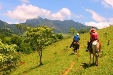 Paraty: 3-Hour Rainforest Horseback Ride & Waterfall Tour