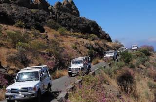 Gran Canaria: Geländetagestour mit optionalem Kamelritt