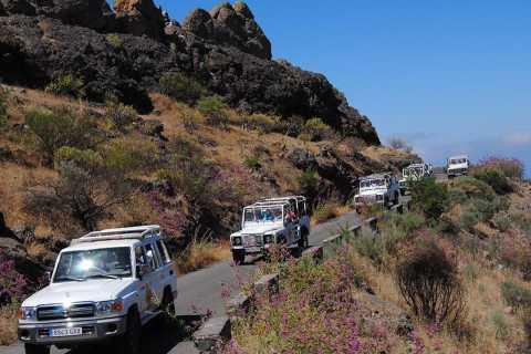 Gran Canaria: Heldags off-road jeepsafari med kamelridning