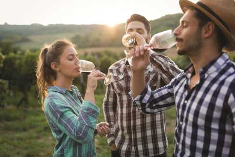 From San Francisco: Napa & Sonoma Valley Wine Tour