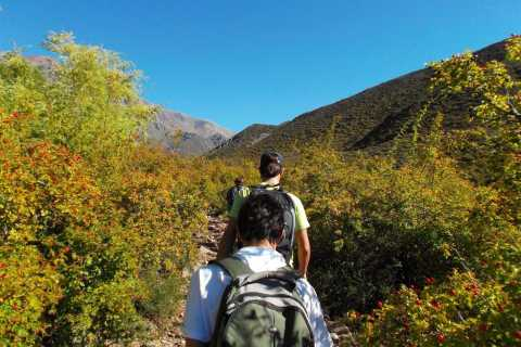 Mendoza: 5-Hour Mountain Trekking With Lunch