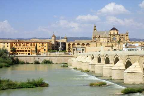 Full-Day Cordoba Tour from Torremolinos, Marbella, Estepona