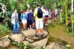 Paraty: Excursão de Caminhada pela Floresta Dourada