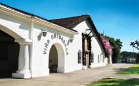Undurraga: Official Winery Tour