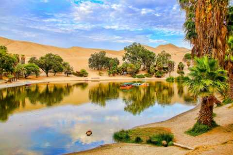 From Lima: Ballestas Island & Huacachina Oasis Private Tour