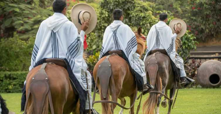 Lima: Peruvian Paso Horse Show with Lunch or Open Bar