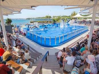 Mallorca: Eintrittskarten für den Tierpark Marineland