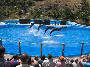 Gran Canaria: Eintritt zum Palmitos Park