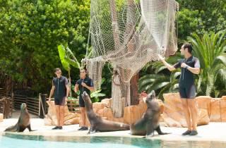 Teneriffa: Eintrittskarten für den Jungle Park