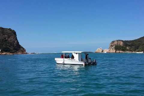 Knysna: Lagoon Boat Cruise and Oyster Tour with Tastings