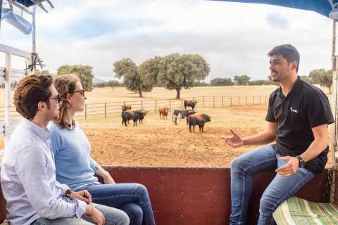 Tour por la ciudad de Toledo y almuerzo en una granja 4x4 desde Madrid