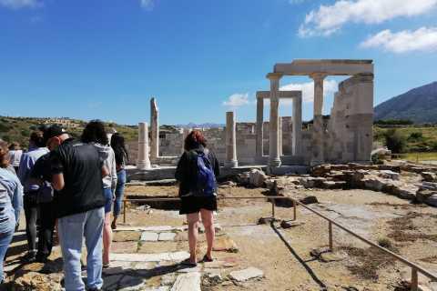 Naxos: visite guidée de l'île d'une journée en bus